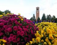 Flowers with UNI cheerleaders and the campanile in the background